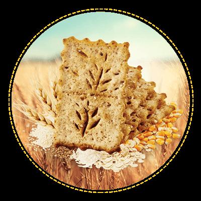 galletas saltin destacada semilla cereal